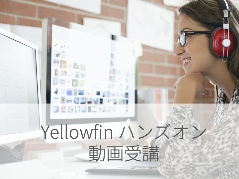 【動画受講】Yellowfinハンズオンセミナー